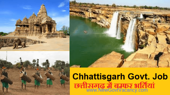 cg govt job in chhattisgarh