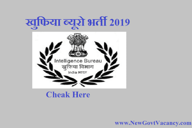 IB Recruitment 2019