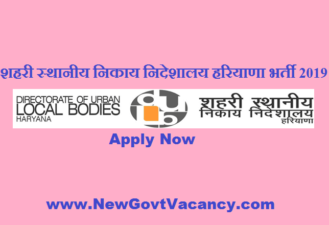ULB Haryana Recruitment 2019